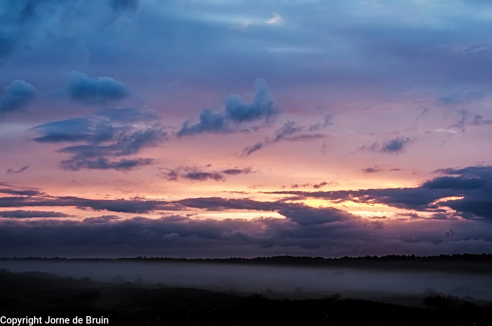 Sunrise over the misty forest Texel, the Netherlands