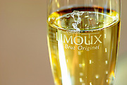 Glass embossed with Limoux Le Brut Originel. Chateau Rives-Blanques. Limoux. Languedoc. France. Europe.