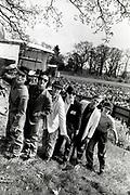 The Boomtown Rats - Loch Lomond Rock Festival 1979