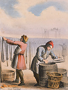Curing cod by salting and hanging up to dry.  From 'Graphic Illustrations of Animals and Their Utility to Man',  London, c1850.