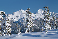 Goat Mountain in winter seen from Heather Meadows Reacreation Area, North Caascades Washington