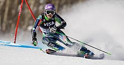 27.11.2010, Ajax Mountain, Aspen, USA, FIS World Cup Ski Alpin, Lady, Aspen, Giant Slalom, im Bild Slovenian Alpine Ski Team Athlete Tina Maze // during Womens Alpine World Cup Apine Ski Racing Giant Slalom on Ajax Mountain in Aspen, Colorado on November 27, 2010.