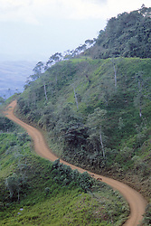 Windy Mountain Road