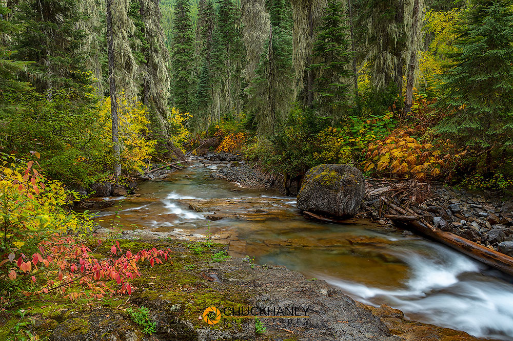 Lost Johnny Creek in autumn in the Flathead National Forest, Montana, USA