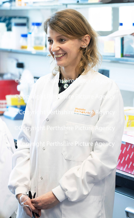 Muscular Dystrophy UK visit to the Biomedical Sciences Research Complex, St Andrews University…<br />Dr Monika Magon<br />Picture by Graeme Hart.<br />Copyright Perthshire Picture Agency<br />Tel: 01738 623350  Mobile: 07990 594431