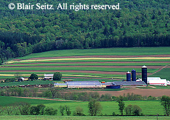 PA landscapes, Farm Valley and Mountain Forest, Summer Crops and Foliage, Northern Dauphin Co., Pennsylvania