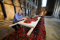 Licensed to London News Pictures 04/11/2016<br /> Hull-based artist Martin Waters puts the finishing touches to his poppy installation 'Wounded' at Beverley Minster, East Yorkshire.  Made from hundreds of poppies it remembers the work of the stretcher bearers, nursing and medical staff of World War One and World War Two.<br /> It's on display in the Minster from 1-20 November.<br /> Photo Credit: Sam Atkins/LNP