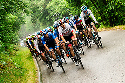 Peloton in Brda during 4th Stage of 26th Tour of Slovenia 2019 cycling race between Nova Gorica and Ajdovscina (153,9 km), on June 22, 2019 in Slovenia. Photo by Vid Ponikvar / Sportida