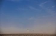 Burza piaskowa na Podlasiu