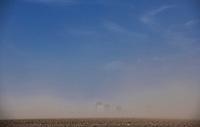 Bielsk Podlaski, 16.04.2020. N/z lokalna burza piaskowa przy drodze z Bielska do Orli spowodowana susza i silnym wiatrem nawiewajacym piasek z wysuszonych pol fot Michal Kosc / AGENCJA WSCHOD