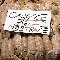 "Local ""Canocce"" are on display at one of the fishmongers at the Rialto Market. The Biennale del Gusto is an exhibition held over four days, dedicated to traditional food and drinks from all regions of Italy."