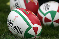 The Wales rugby team press conference and team training on 18/11/2008 ahead of their autumn international against New Zealand.  Rugby balls. pic by Andrew Orchard ©  Andrew Orchard sports photography