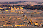 Overiew of Palmyra showing Great Colonnade running from the Funerey Temple in foreground to the Temple of Bel at rear, Syria at sunset from Muslim Castle.