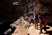 Hikers follow ledge above Deer Creek Canyon, river mile 136, Grand Canyon National Park, Arizona..Subject photograph(s) are copyright Edward McCain. All rights are reserved except those specifically granted by Edward McCain in writing prior to publication...McCain Photography.211 S 4th Avenue.Tucson, AZ 85701-2103.(520) 623-1998.mobile: (520) 990-0999.fax: (520) 623-1190.http://www.mccainphoto.com.edward@mccainphoto.com.