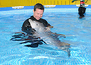 """Dolphin Calves Born at Brookfield Zoo <br /> <br /> A 6-week-old bottlenose dolphin calf born at Brookfield Zoo on October 28 is being handreared by marine mammal staff because his mother was not providing adequate maternal care. """"A member of the Chicago' Zoological Society's marine mammal staff has been in the pool with the calf 24 hour a day providing him with the necessary support, including feeding him, conducting important behavioral observations, taking breath rates, and documenting his growth and weight measurements.<br /> © Brookfield Zoo/Exclusivepix"""