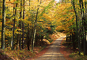 PA landscapes, Allegheny National Forest, autumn