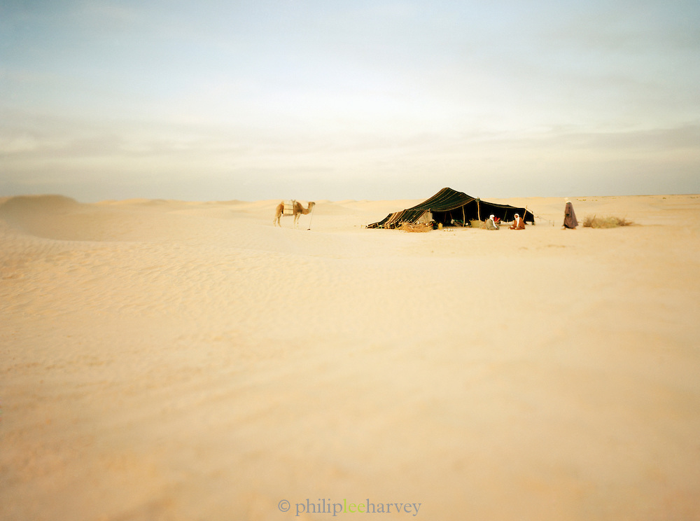 A camel traders camp in the Saharah desert in the south of Tunisia