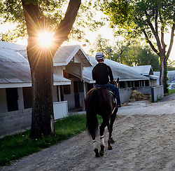 April 26, 2017 - Lexington, Kentucky, U.S. - CHELSEA HEERY, recipient of a Diploma in Equine Studies/ Horseman Option in 2014 from the North American Racing Academy, and now the Assistant Trainer for Joe Sharp Racing Stables, during an early morning workout at Keeneland Race Course. The two-year NARA program at Bluegrass Community & Technical College, the first and only accredited community college-based racing school in the U.S, provides students with the education, training and experience needed to become skilled in the art of riding a racehorse, proficient in the care and management of racehorses and knowledgeable about the workings of the thoroghbred industry.  .Students can choose to focus on one of two specific pathways - jockey or horseman.  The jockey candidates learn principles of balance, proper position and use of the rider's body when riding or exercising a racehorse and the lifeskills necessary to be a professional jockey.  In addition to riding-based classes, students take part in the core curriculum of basic horse care, anatomy and physiology, lameness, health and nutrition and equine business principles. Students who graduate from the horseman pathway will have acquired the knowledge and skills for a career in the equine workforce such as grooms, assistant trainers, farm management and bloodstock agents.(Credit Image: © Brian Cahn via ZUMA Wire)