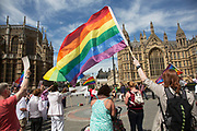 Demonstrators holding rainbow flags and promoting equal marriage rights outside Parliament in London, UK, ahead of the final reading of the 'Marriage Bill 2012-13 to 2013-14'. A Bill to make provision for the marriage of same sex couples in England and Wales.