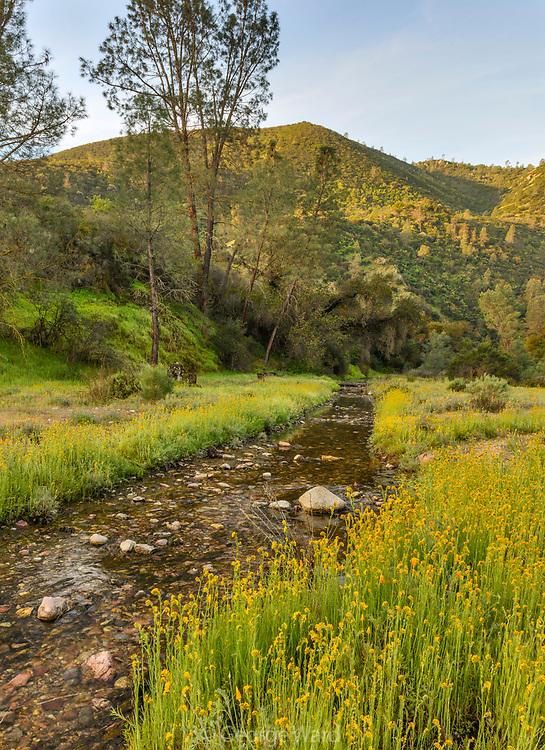 Chalone Creek in Spring, Pinnacles National Park, California