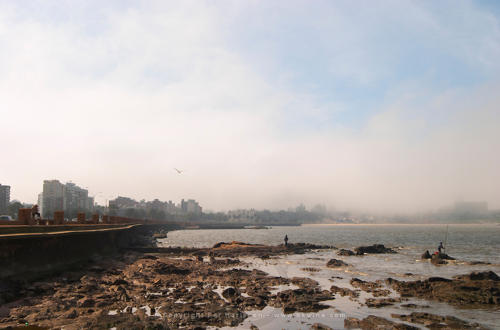 The city skyline in mist rocks in the foreground and men fishing from the rocks., on the riverside seaside walk along the river Rio de la Plata Ramblas Sur, Gran Bretagna and Republica Argentina Montevideo, Uruguay, South America