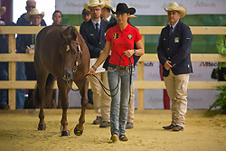 Ann Poels, (BEL), Big Sky Whizard - Horse Inspection Reining  - Alltech FEI World Equestrian Games™ 2014 - Normandy, France.<br /> © Hippo Foto Team - Dirk Caremans<br /> 25/06/14