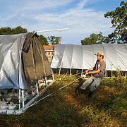 Eric Simmons moves a chicken coup to a new patch of pasture at Nature's Gourmet's farm in Petal, Mississippi. The farm operates a regenerative agriculture model and offers cuts of beef, pork, chicken and eggs for customers. Nathan Lambrecht/Journal Communications