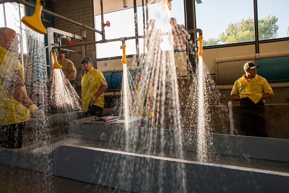 Employees of the Feather River Fish Hatchery wait for a holding tank to be filled with fish before beginning salmon spawning operations on September 26, 2009. Oroville, California.