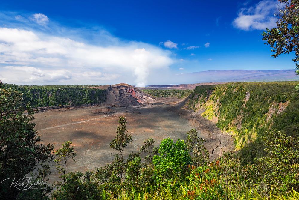 Kilauea Iki and steam from the Halemaumau Crater, Hawaii Volcanoes National Park, Hawaii USA
