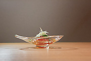 Simmered tomato (tomato gelée, ginger and chive) at Kajitsu, 125 E. 39th St., New York.