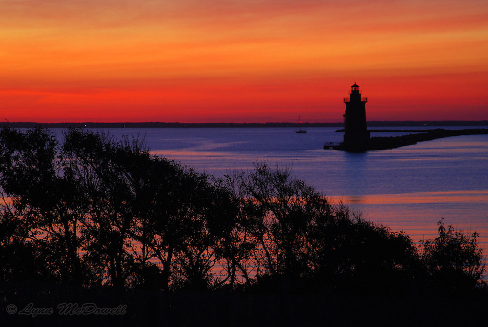 Amazing sunset colors with lighthouse and tree silhouette, Cape Henlopen Delaware