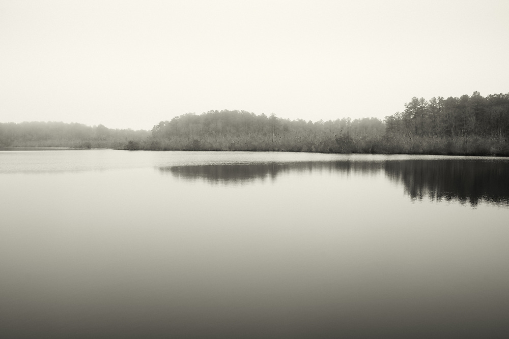 A foggy view at Bombay Hook State Park, Delaware.