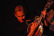 The Greg Morton Band concert at the 2011 Tucson Folk Festival.
