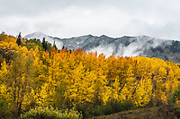 First snowstorm of the autumn season as clouds blow in over the Anthracite Range.  Colorado.