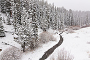 A fresh snowfall over untouched wilderness in the Valles Caldera National Preserve near Los Alamos, New Mexico.