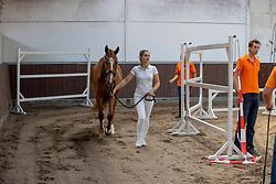 01, Ma Fleurie<br /> Stamboek keuring KWPN Turnhout 2020<br /> 01, Ma Fleurie<br /> 18/07/2020