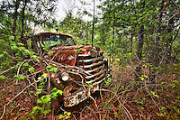 Abandoned Diamond truck in the middle of the woods in upstate SC.
