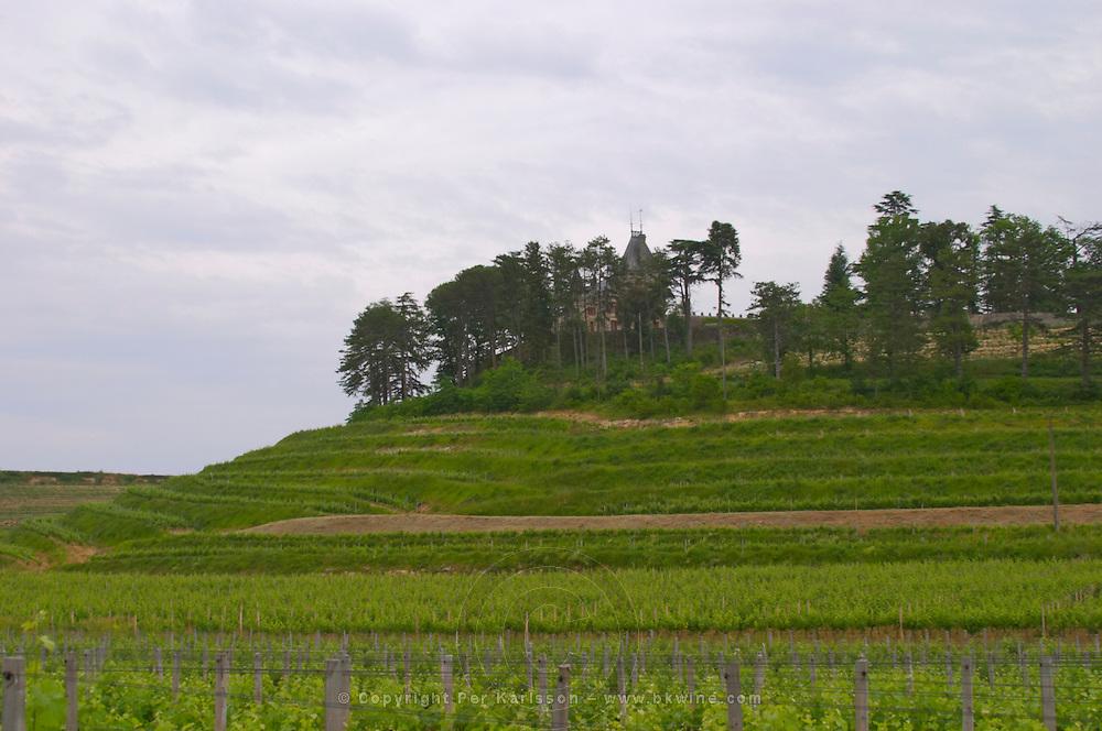 A view of the impressive medieval caste Chateau de Pressac on a hilltop and its terraced vineyards which is unusual in Bordeaux Chateau de Pressac St Etienne de Lisse Saint Emilion Bordeaux Gironde Aquitaine France
