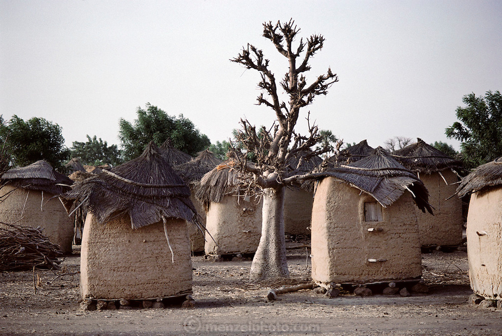 Earthen walled, thatch roofed graineries in the village of Somo, Mali (West Africa). Material World Project.