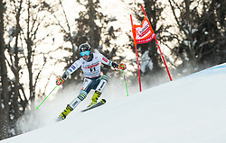 Forerunner Martin Krizaj (SLO) during 1st Run of Ladies' Giant Slalom at 57th Golden Fox event at Audi FIS Ski World Cup 2020/21, on January 17, 2021 in Podkoren, Kranjska Gora, Slovenia. Photo by Vid Ponikvar / Sportida