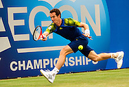 Britain's Andy Murray returns to Jo-Wilfried Tsonga of France, during their semifinal match for the Aegon Championships at the Queen's Club in London, Britain, 15 June 2013. EPA/BOGDAN MARAN