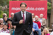 Senator and GOP presidential candidate Marco Rubio reacts to a question on legalizing marijuana from 79-year-old Elease Pickens during the Bully Pulpit series town hall at the College of Charleston December 1, 2015 in Charleston, South Carolina. The elderly woman surprised the audience with her support but Rubio opposes legalization.
