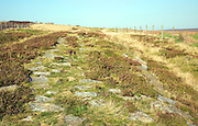 Roman road locally called Wade's Causeway crossing Wheeldale Moor, North Yorkshire Moors, England