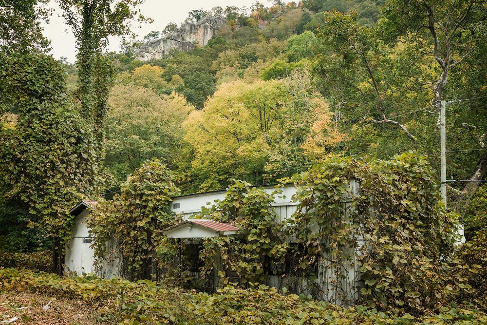 Stone Creek, Lee County, Virginia 20.10.09