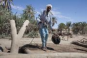 Chad, Mao, Desertification, Great Green Wall, Oasis, Lake Chad Basin, Kanem Region