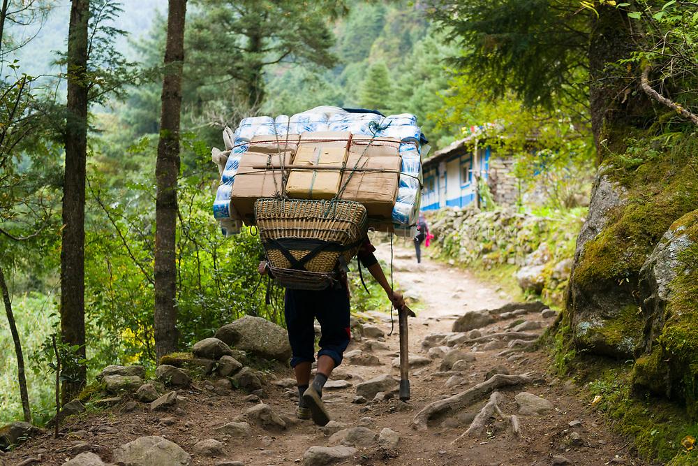 A porter carries supplies in the Solukhumbu region, Nepal. Photo © robertvansluis.com