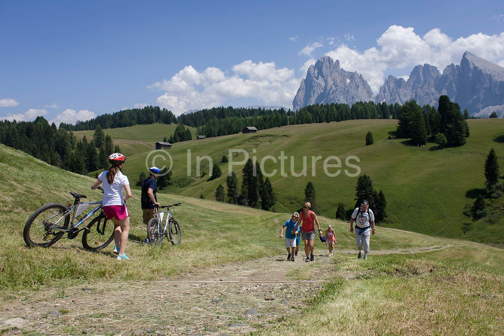 Hikers and cyclists on the Alpe di Siusi (German: Seiser Alm) plateau, above the South Tyrolean town of Ortisei-Sankt Ulrich in the Dolomites, Italy. Walking along one of the dozens of paths, these hikers enjoy panoramic views of the peaks that envelope the location.  The Alpe di Siusi is the biggest high-alpine pasture in Europe with a surface of 57 km² and its altitude range from 1680 to 2350 m above sea level. This high-alpine pasture is located in the heart of the Dolomites surrounded by the Sasso Lungo Mountain Group, the Sciliar Nature Park, and the Catinaccio Mountain Group, the Northern Alps and the Sciliar Mountain Massif with Santner Peak.
