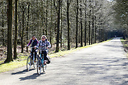 In Maarsbergen rijden twee vrouwen op de fiets door het bos.<br /> <br /> In Maarsbergen two women ride a bicycle through the woods.