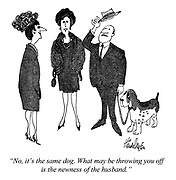 """""""No, it's the same dog. What may be throwing you off is the newness of the husband."""""""