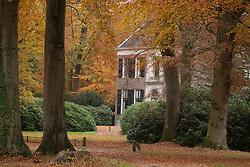 Gooilust 's-Graveland, Wijdemeren Herfstblad, Autumn leave